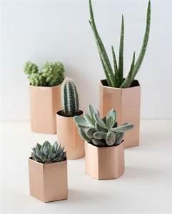 Pot Pour Plante : des pots en cuivre pour vos plantes shake my blog ~ Teatrodelosmanantiales.com Idées de Décoration