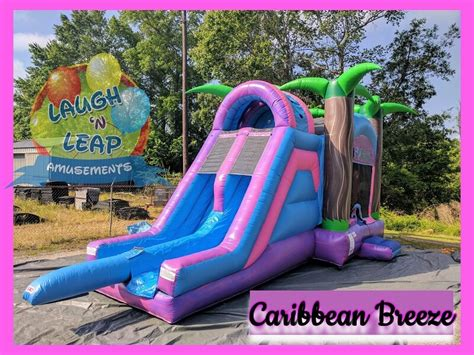 Purple And Pink Bounce House Slide Inflatable Rental