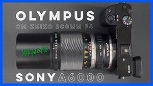 Olympus Zuiko 200mm F4 Adapted To The Sony A6000