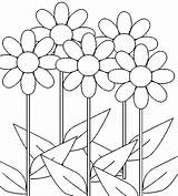 Coloring Daisy Pages Flowers Flower Printable Daisies Bestcoloringpagesforkids Growing Books sketch template