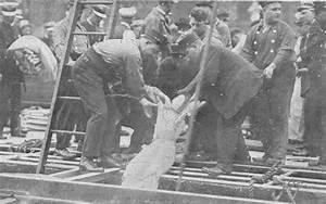 the dead of the titanic - Google Search   Titanic ...