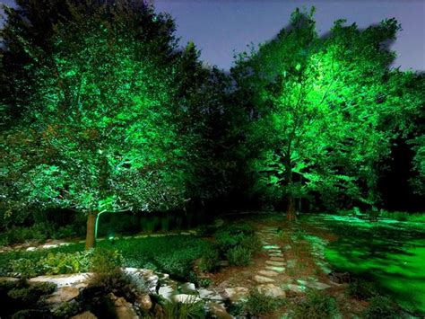 outdoor lighting trees room ornament