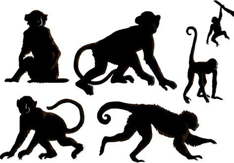 the monkey vectors free vectors clipart