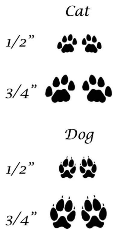 difffernce between cat and dogs paws - Bing Images: | Print tattoos, Cat paw tattoos, Cat paw