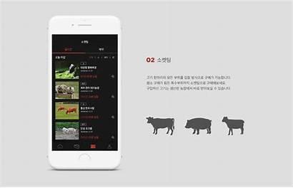 Behance App Website