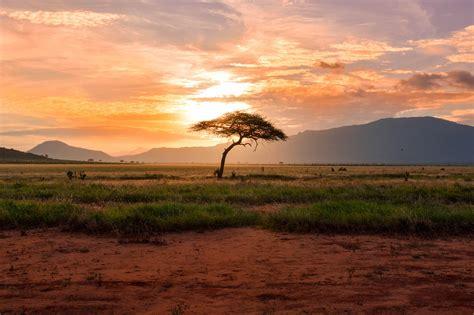 Ceļojums uz Āfriku - kuras pilsētas apskatīt?   TripThis
