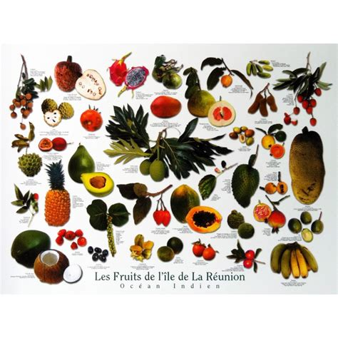 cuisine moka un poster des fruits créoles jade edition un classique à
