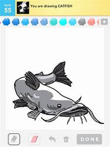 Catfish Drawings - How To Draw Catfish In Draw Something