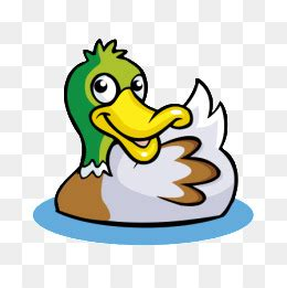 duck cartoon png vectors psd  clipart