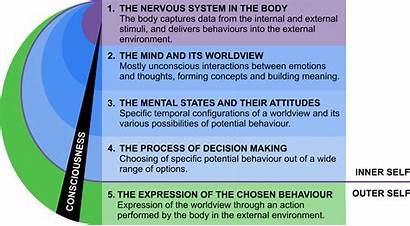 Worldviews Framework Potential Behaviour Mental Development Transdisciplinary