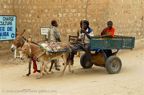 Pictures of Mali - Timbuktu-0002 - local transport by ...