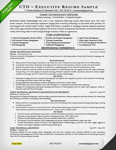 Cto Resume Examples Examples of Resumes