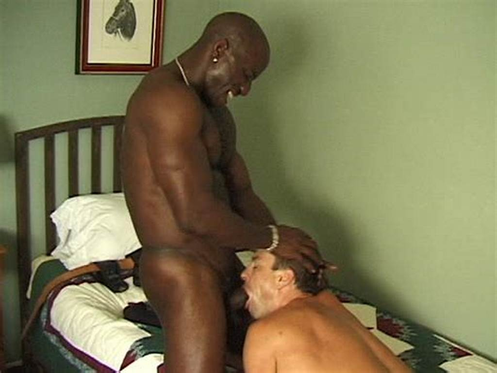 #Interracial #Gay #Cock #Sucking
