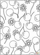 Coloring Pages Cherries Flowers Pattern Cherry Printable Blossom Flower Sheets Colouring Patterns Food Hawaiian Printables Adult Hearts Designs Popular sketch template