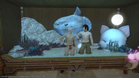 eorzea  tier  aquarium final fantasy xiv  lodestone