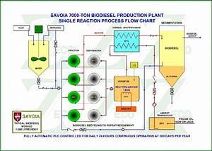 Biodiesel Production Plant - Hong Kong
