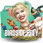 Prey Icon Birds Folder Designbust Icons Movie