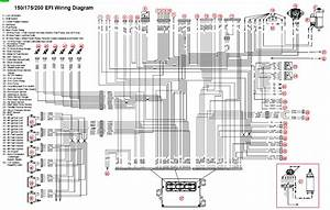 Fuel Pump U2013 Page 12 U2013 Circuit Wiring Diagrams Wiring Diagram