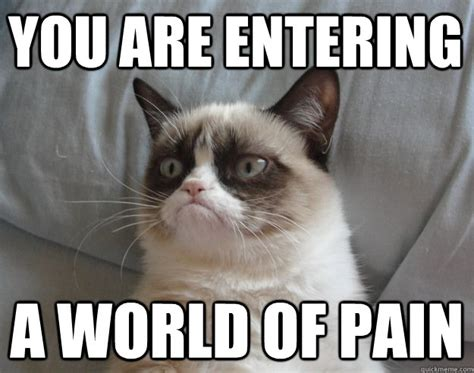 You Are Entering A World Of Pain Grumpy Cat Lebowski