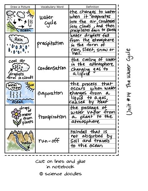 5th Grade Science Water Cycle Vocabulary Homeshealthinfo