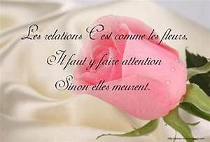 Proverbes Et Citations D 39 Amour En Images Message D 39 Amour