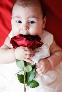Cute girl with red rose | Stock Photo | Colourbox
