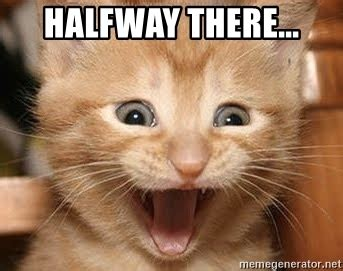 Halfway There Meme - halfway there excited kitten meme generator