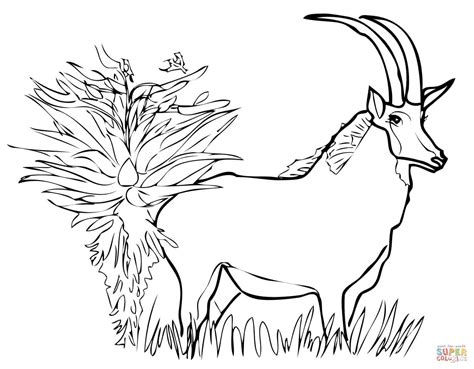Giant Sable Antelope Coloring Page