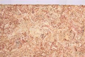 Trixie Sphagnum Moss Tropical Terrarium Substrate Brick, 4 ...