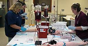 How do you find nearby phlebotomy classes for Accredited phlebotomy training program