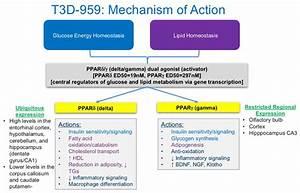 Pipeline | T3D Therapeutics