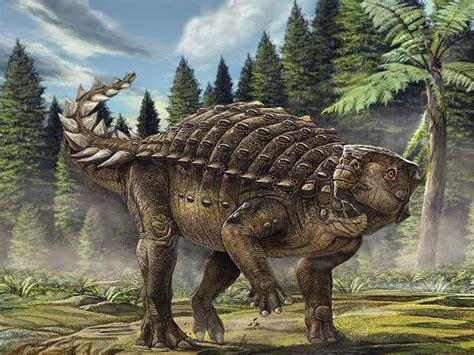 Dinosaur Animals Photos Gallery High Defination Wallpapers