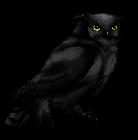 Black Owl Wallpapers by Image Black Owl By Feralkyn D6byceb Png Animal Jam