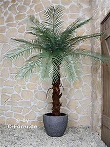 Palmen Für Draußen : kunstpalmen aus hamburg k nstliche palme f r drau en ~ Michelbontemps.com Haus und Dekorationen