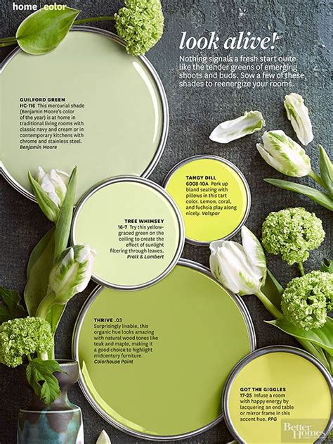 Better Homes And Gardens House Colors benjamin colors home and garden and better homes