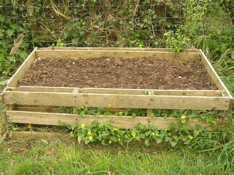 pallet garden bed its time to make an attractive pallet vertical garden bed