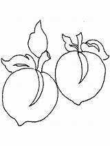 Peach Coloring Fruits Peaches Template Printable Recommended Bright sketch template
