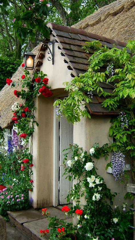 Fine Design Coming Up Roses English Cottage Style