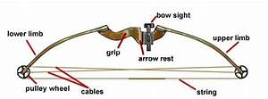 How To String A Compound Bow Diagram