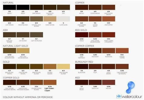 Brown Shade by Shades Medium Brown Hair Color Chart Medium Hair Styles