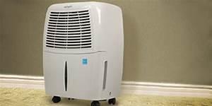 What Capacity Dehumidifier Do I Need