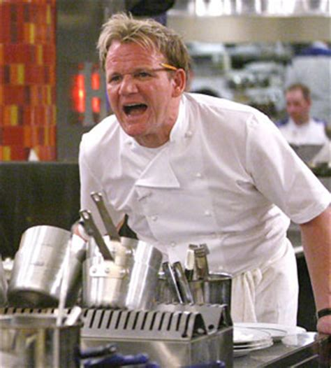 Gordon Ramsay Yelling Memes - faking a living it s a bird it s a plane it s the staff of pd bureau