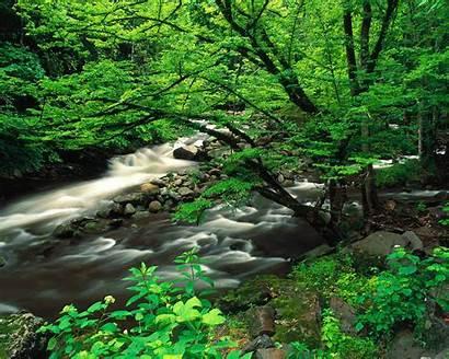 Nature Desktop Scene Wallpapers Pc 1024 1280