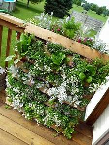 Creating, A, Vertical, Garden, And, Flower, U2013, Diy, From, Euro, Pallets