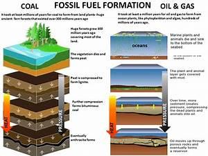 Coal Formation Diagram Nuclear Fusion Diagram ~ Elsavadorla