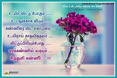 Tamil Kavithai Kadhal Latest Quotes Poems Wallpapers
