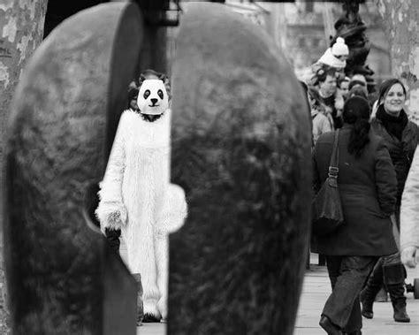 Photo Of The Day Disturbing Panda Londonist