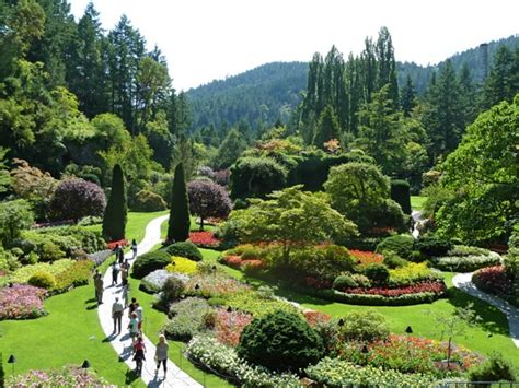 botanic gardens  canada botanical art artists