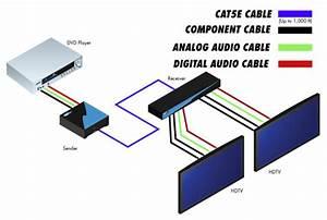 Cat 5 Home Networking Wiring Diagram : ext compaud cat5 142 gefen 1 2 component audio over cat5 ~ A.2002-acura-tl-radio.info Haus und Dekorationen