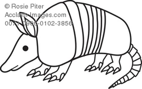black  white clipart illustration   armadillo